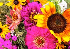 Sunflowers of various sizes and colors are artfully arranged in a loose bouquet